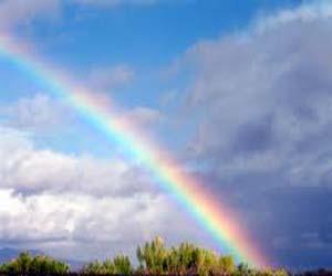 Pin colori di arcobaleno on pinterest - Immagini di gufi arcobaleno ...